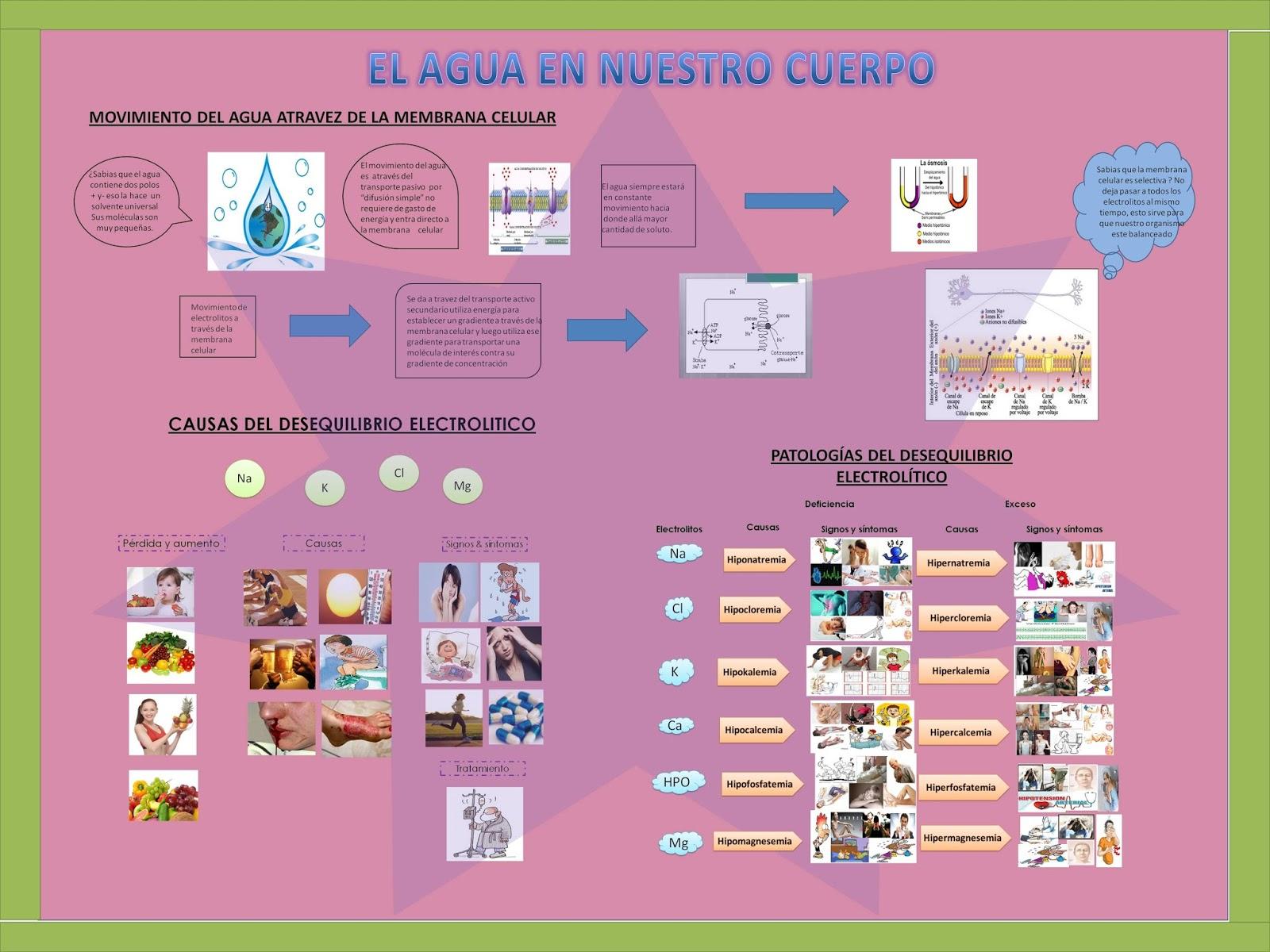 Estructura De Un Periodico Mural Of Nurse 39 S Blog 08 12 13