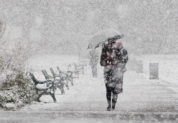анализ стихотворения евтушенко идут белые снеги