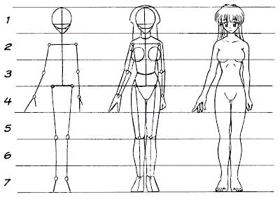 Anatomia do corpo humano feminino fotos