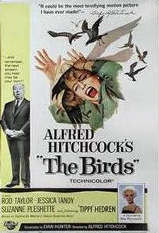 Cartel Los Pájaros de Hitchcock
