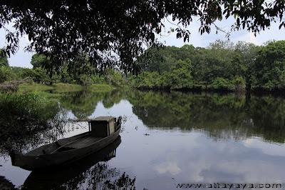 Wisata Hutan Desa Buluhcina Riau