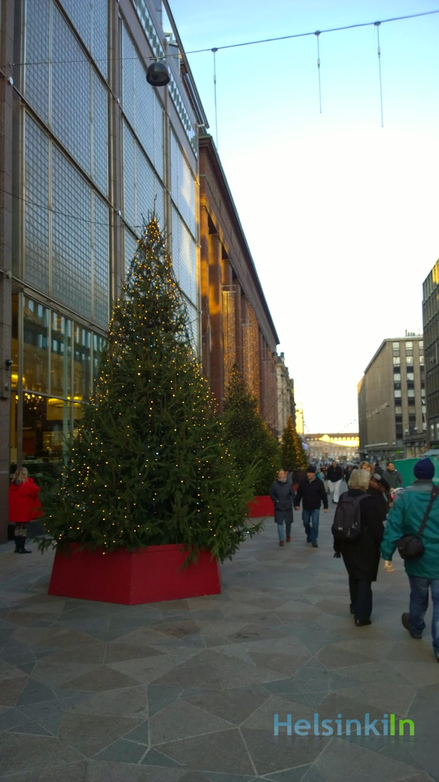 Stockmann Christmas trees on Keskuskatu