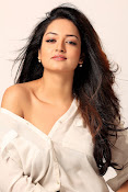 Shanvi latest Portfolio Photos-thumbnail-12