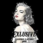 Fashion S Story