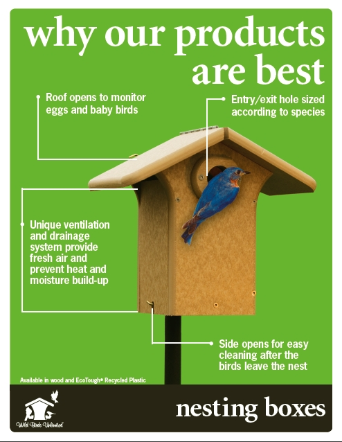 bird house plans michigan