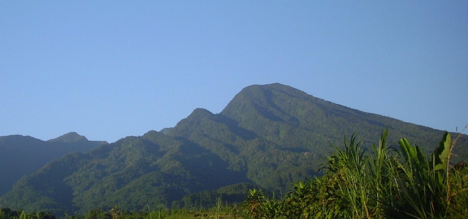 Taman Nasional Halimun Gunung Salak