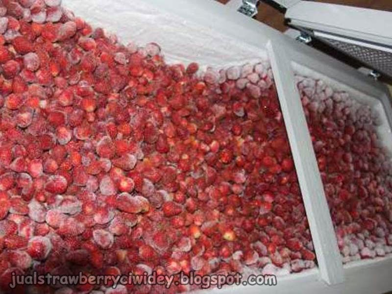 jual strawberry frozen