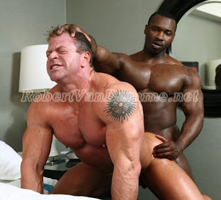 gay bodybuilder escort escorts in bologna