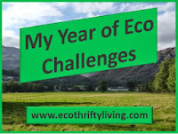 My Year of Eco Challenges!