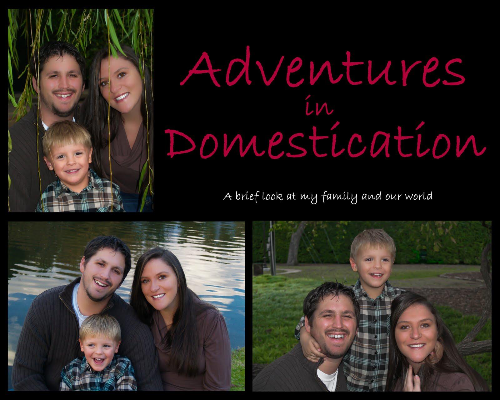 Adventures in Domestication