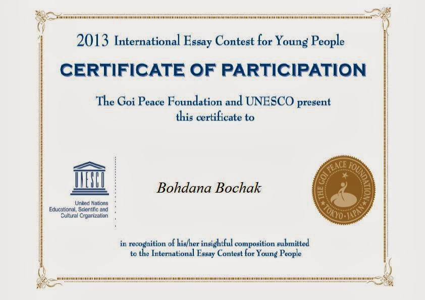 international essay 2013