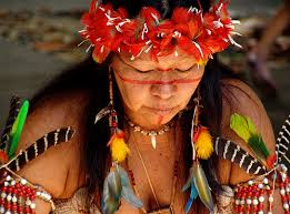 Indigena de Brasil