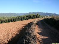 Camí vers el Montseny des de l'Alzina. Autor: Carlos Albacere