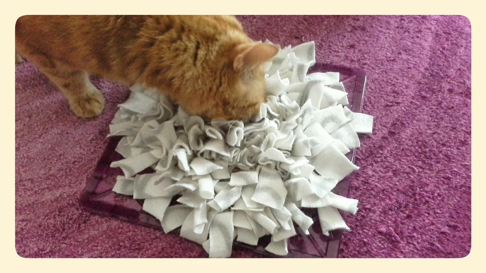 Kitty Cosmetic DIY LeckerlieFummelmatte für Katzen ~ Spülbeckenmatte