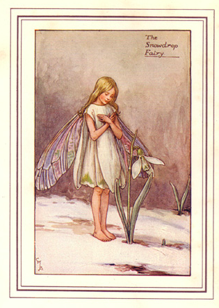 'The Snowdrop Fairy' by Cicely Mary Barker
