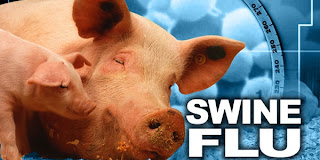 பன்றிக்காய்ச்சலை தடுக்க தடுப்பூசி கோரி தமிழக அரசு மத்திய அரசுக்கு கடிதம். Swine+Flu