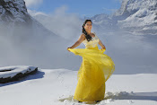 Regina photos from Soukyam movie-thumbnail-8
