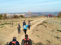 Baixant, entre vinyes, del Serrat del Pont amb Cardona al fons