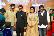 Amala paul vijay reception-thumbnail-32