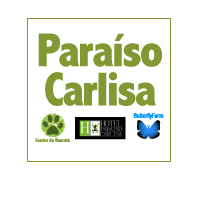 www.centrorescateparaisocarlisa.com