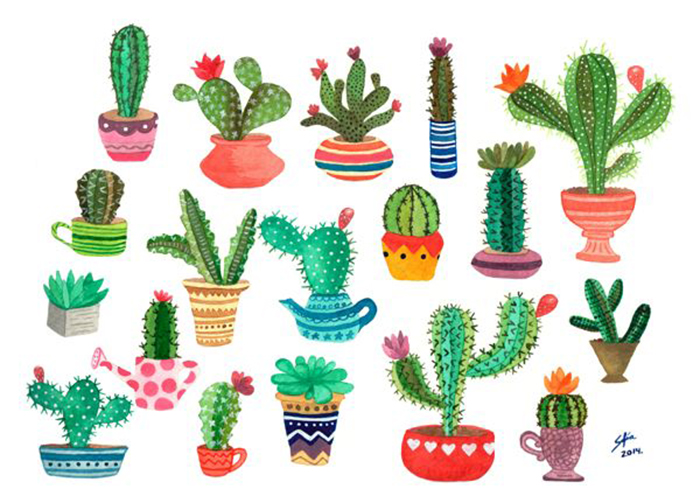 6 ideas to decorate your house with cactus that you will love - IMujer