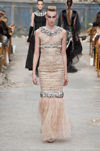 Chanel Couture Fall 2013 - 2014