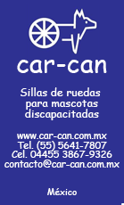 Car Can