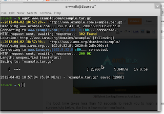 Colorful Terminal in Arch Linux