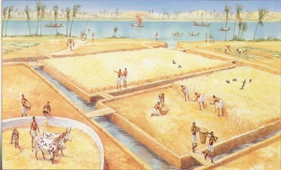 waar leefden de eerste mensen
