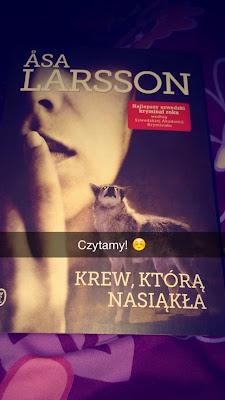 """Krew, która nasiąkła"" Asa Larsson"