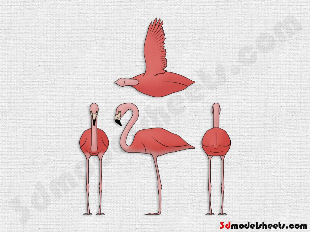 High resolution seamless textures free animal blueprints model sheets flamingo blueprint malvernweather Image collections