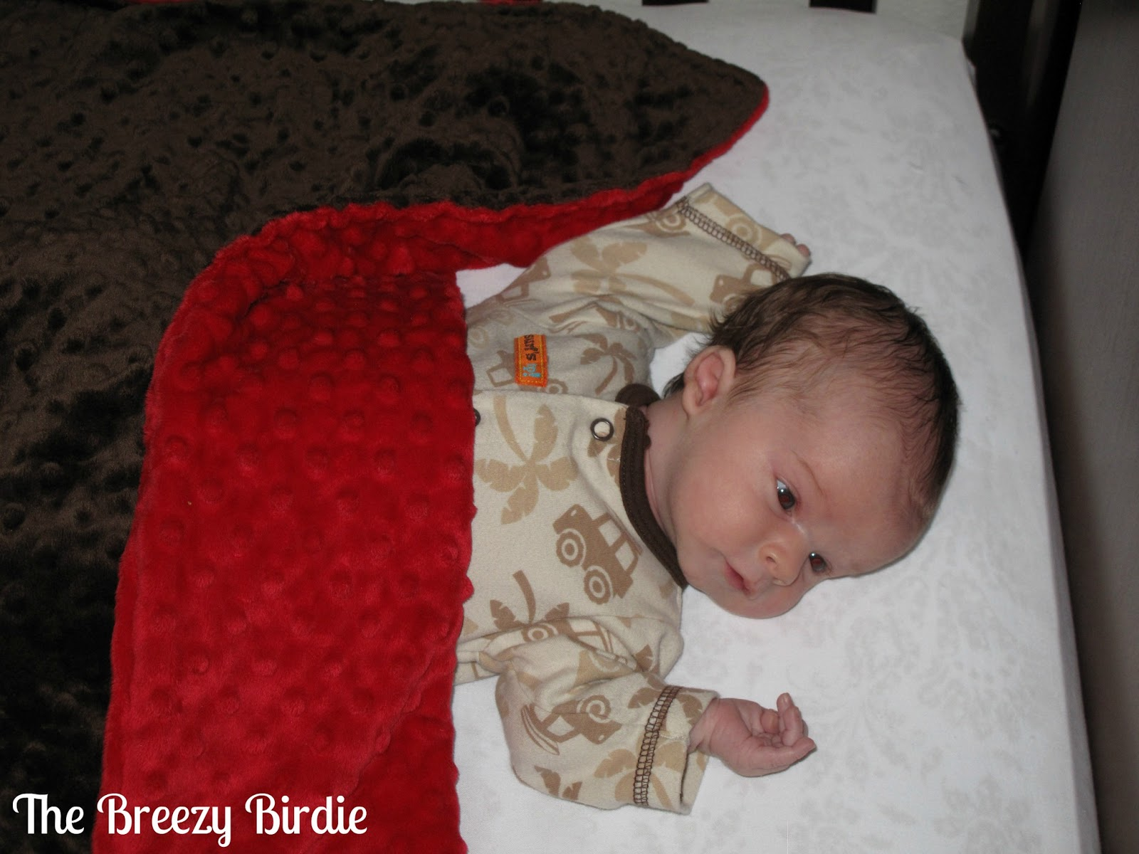 The Breezy Birdie: Review for Just Delivered: Minky Crib Blanket