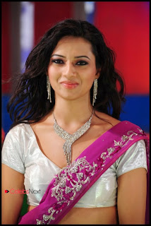 Isha Chawla Perfect Makeup Beautiful Pink Saree with Stone works Silver Blouse Spicy Pics
