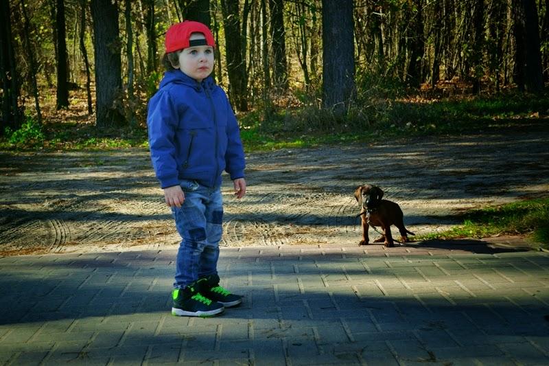 lepszy pies czy dziecko, co lepsze, pies, dziecko, roznice miedzy dzieckiem a psem,