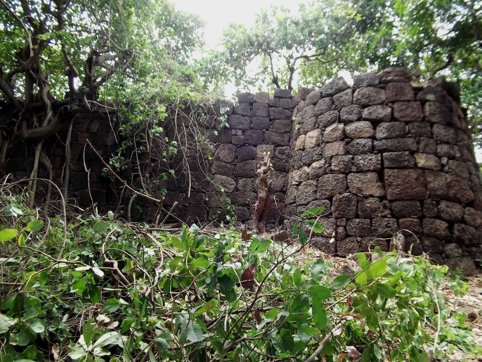 Kille Vasai Mohim Shridatta Raut Kille Bhavanigad Saphale Tal Palghar Fort Conservation