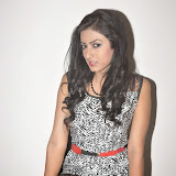 Ruby Parihar Photos in Short Dress at Premalo ABC Movie Audio Launch Function 57