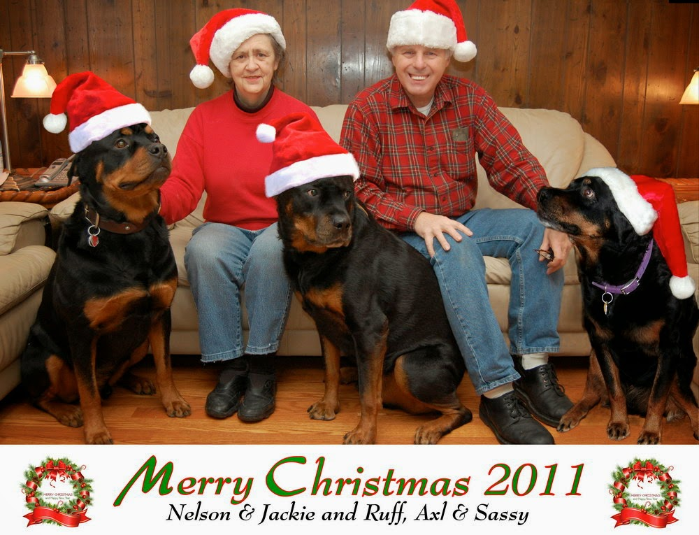 Living with Rottweilers: A short history of my best family Christmas ...