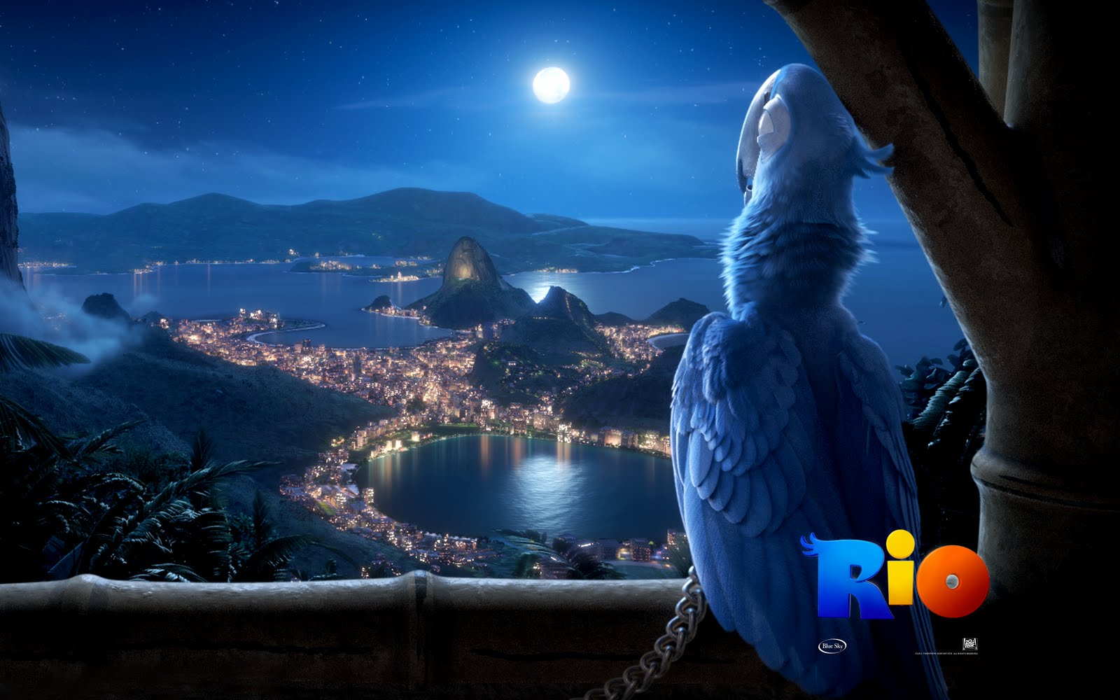 http://4.bp.blogspot.com/-8G4Xke5Kxx8/Te3rduuUVCI/AAAAAAAACLE/k6TPwkHWeFs/s1600/Rio+Movie+Wallpapers+%25289%2529.jpg