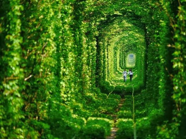 Tunel del Amor, Ucrania