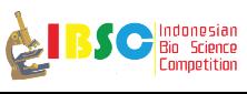 IBSC VI 2012