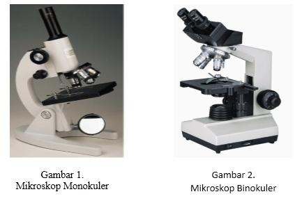 Laporan praktikum biologi umum pengenalan mikroskop