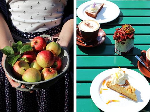 Holunderweg 18 schwedisch backen Blogevent Fika Foodblog
