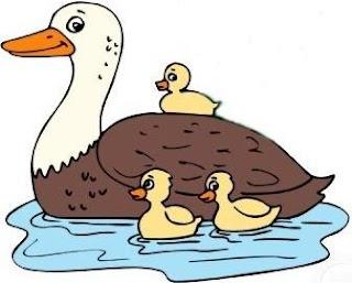 Dibujo de un Pato hembra con su cría (patito)