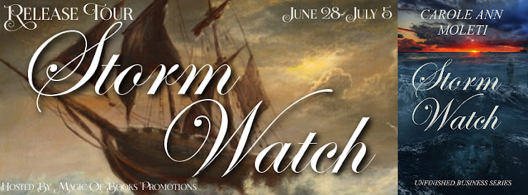 Storm Watch: Book Three in the Unfinished Business Series