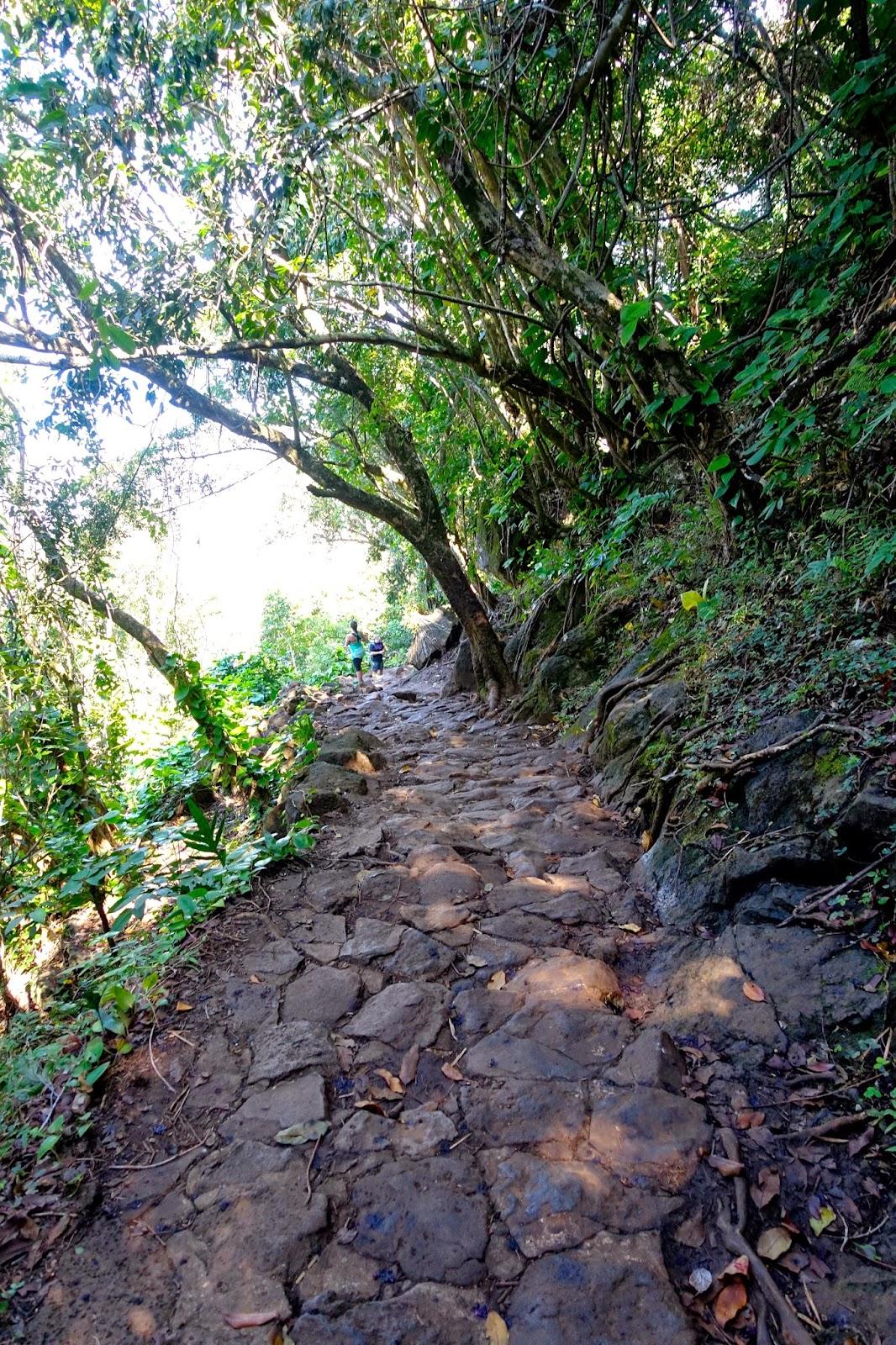 Na Pali Coast (Kalalau) Trail - Kauai, Hawaii | AllTrails