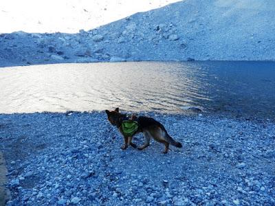 lago-helado-monte-perdido-con-perro-pirineo