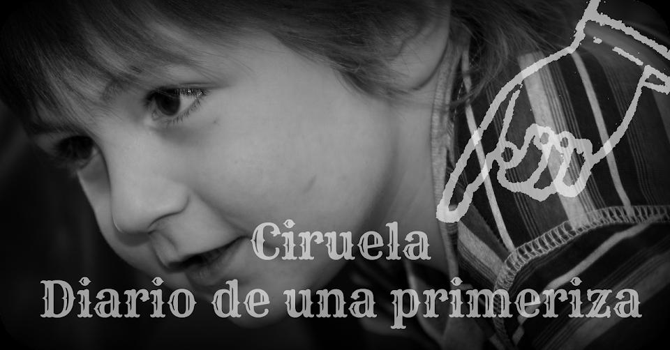 Ciruela, Diario de una mamá primeriza.