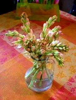 bunga sedap malam dalam vas