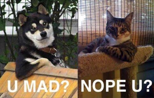 U Mad? - Nope U?