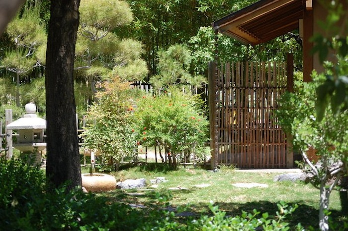 Japanese Friendship Garden Of Phoenix Tea Ceremony At Japanese Friendship Garden